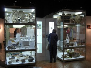 Science writing and content development for museum exhibits: Imagine That! collections based exhibit for the Burke Museum of Natural History and Culture